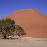 dune del Namib (Namibia)