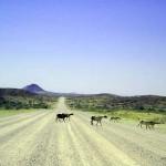 pista per il Damaraland (Namibia)