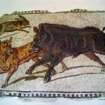 mosaico al Museo del Bardo (Tunisia)