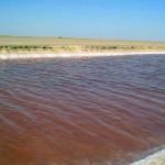 lungo lo Chott el Jerid (Tunisia)