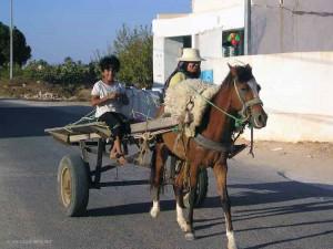 sulle strade di Djerba (Tunisia)