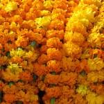 fiori al mercato di Durbar Square (Kathmandu, Nepal)