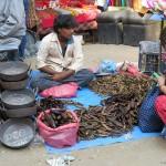 venditore di pesci di Asan Tole (Kathmandu, Nepal)