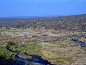 panorama sulla vallata (Kruger Park, Sud Africa)