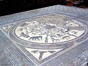 mosaico (Volubilis, Marocco)