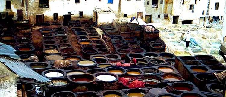 conceria (Fes, Marocco)