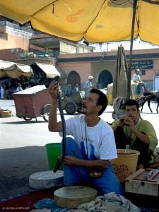 incantatore di serpenti a Jemaa el Fna (Marrakech, Marocco)
