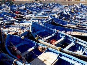 al porto vecchio (Essaouira, Marocco)