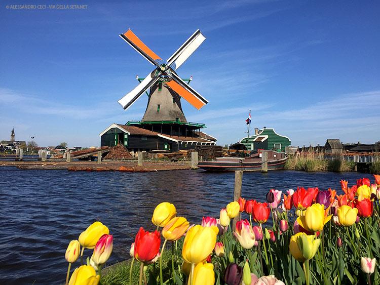 Zaanse Schans (Olanda, Paesi Bassi)