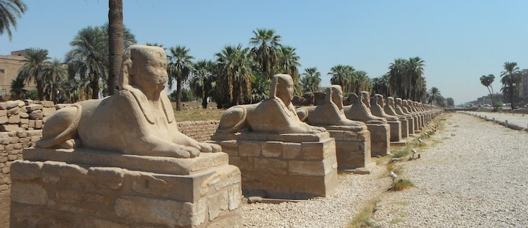 viale delle sfingi al Tempio di Luxor (Egitto)