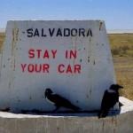 lookpoint al Parco Etosha (Namibia)