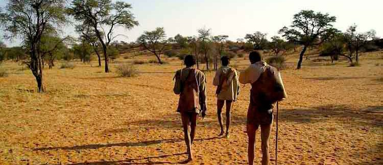 boscimani nel deserto del Kalahari (Namibia)